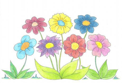 Kwiaty-kolor
