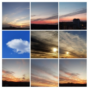 20200424_153337-COLLAGE