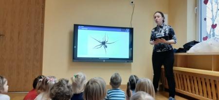 Warsztaty Szkatułka - pająki