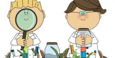 Eksperyment z jajem i puzzle