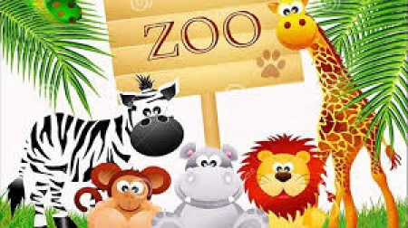 Zwierzęta egzotyczne cz 1