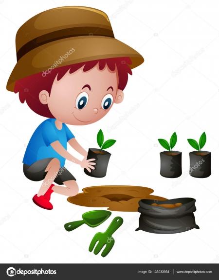 Jak rosną rośliny