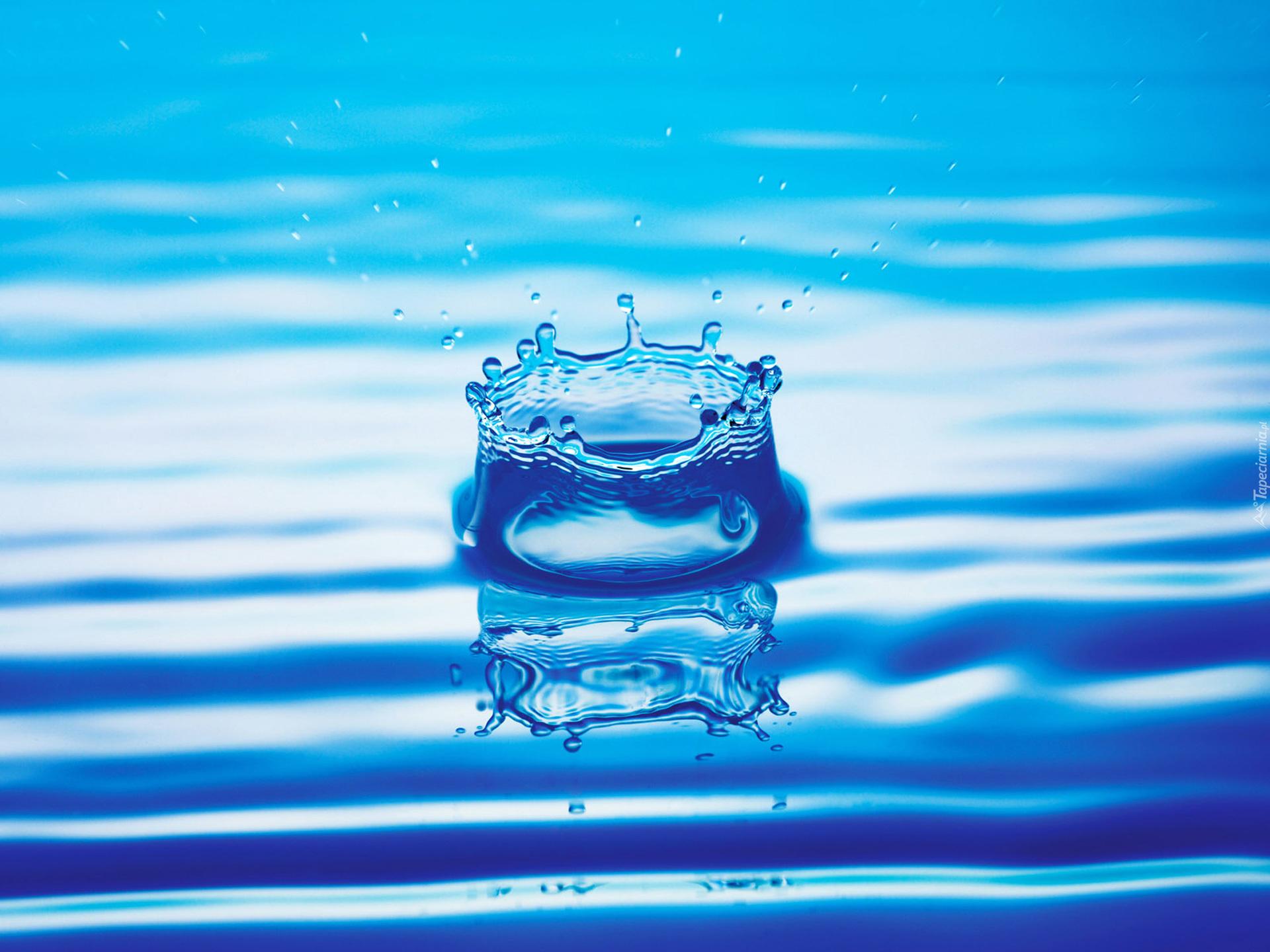 Jak kamień w wodę ...