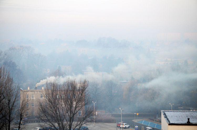 Smog - zły smok